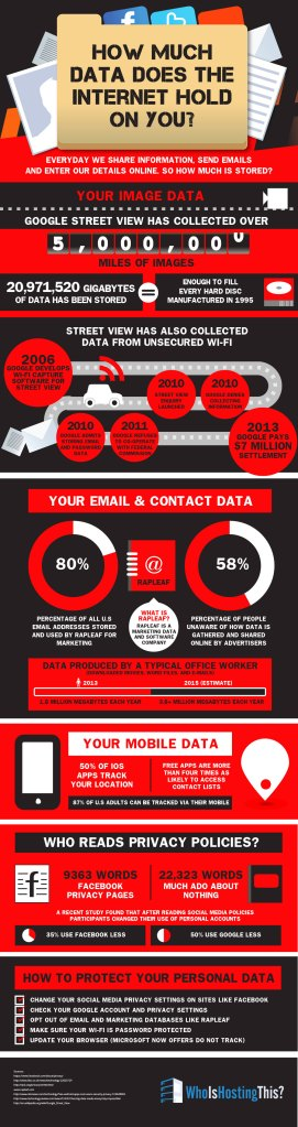 Internet Privacy Infographic