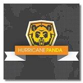 Hurricane Panda